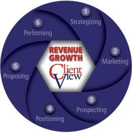 Revenue Growth Client View